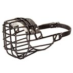 Wire Dog Muzzle for Winter with Black Rubber Cover