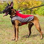 Malinois Warm Nylon Winter Coat for Walking