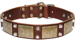 Gorgeous War Dog Leather Dog Collar - C85 (old brass massive plates +2 nickel pyramids)