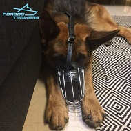 German Shepherd Presents Lightweight Dog Wire Basket Muzzle with Nose Padding