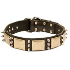 Gorgeous War Dog Leather Dog Collar - C84 (old brass massive plates +3 nickel spikes)40% DISCOUNT