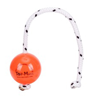 High Quality Plastic Dog Ball on Rope with Magnets