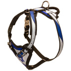 """Holy Land"" Style Dog Harness for Tracking and Walking"