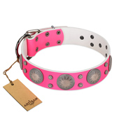 """Silver Star"" Fantastic FDT Artisan Pink Leather Dog Collar with Engraved Studs"
