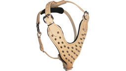 Adjustable Spiked Leather Dog Harness for Training and Walking