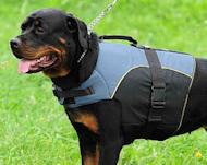 Wear-and-tear resistant Rottweiler Nylon Vest Harness perfect for all seasons