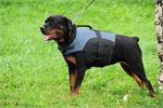 30% Discount - NEW 2014 All Season Extra Strong Nylon Vest Dog Harness for Rottweiler- H13-Outdoor