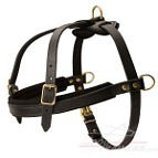 Saint Bernard tracking/Pulling Leather Dog Harness