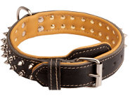 Creative design of leather dog collar with 2 rows of nickel-plated spikes