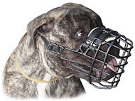 Bullmastiff Wire Dog MUZZLE for winter with rubber cover