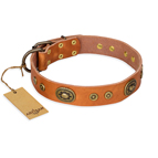 'Dandy Pet' FDT Artisan Handcrafted Tan Leather Dog Collar