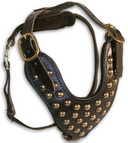 Studded leather dog harness- H15