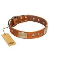 """Ancient Treasures"" FDT Artisan Tan Leather Dog Collar with Antiqued Plates and Studs"