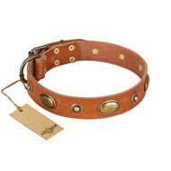 """Visual Magic"" FDT Artisan Tan Leather Dog Collar for Daily Activities- 1 1/2 inch (40 mm) wide"