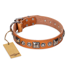 'Era of Future' FDT Artisan Handcrafted Tan Leather Dog Collar with Decorations