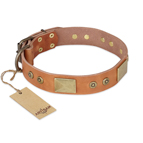'The Middle Ages' FDT Artisan Handcrafted Tan Leather Dog Collar