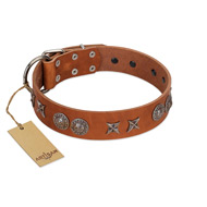 """Splendid Armor"" Premium Quality FDT Artisan Tan Designer Dog Collar with Shields and Stars"