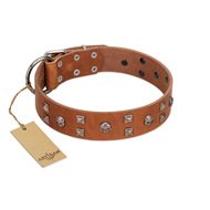"""Enchanted Skulls"" FDT Artisan Tan Leather Dog Collar with Chrome Plated Skulls"