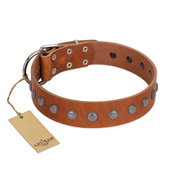 """Little Floret"" Fashionable FDT Artisan Tan Leather Dog Collar with Silver-Like Adornments"