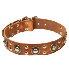 'Rock n Roll' Leather Dog Collar - Cool Mix of Decorations