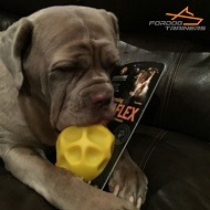 Neapolitan Matiff Got His Tetraflex Treat Dispensing Ball Toy for Large Breeds