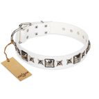 'Intergalactic Travelling' FDT Artisan Handcrafted White Leather Dog Collar