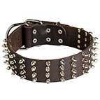 2 inch wide Leather Spiked Dog Collar