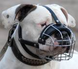 Basket Wire Dog Muzzle Light For American Bulldog