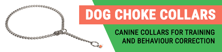 Canine Collars for Training and Behaviour Correction