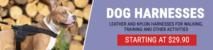 Leather and Nylon Harnesses for for Walking, Training and Other Activities