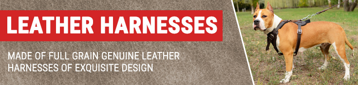 Made of Full Grain Genuine Leather Harnesses of Exquisite Design