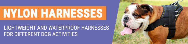 Lightweight and Waterproof Harnesses for Different Dog Activities