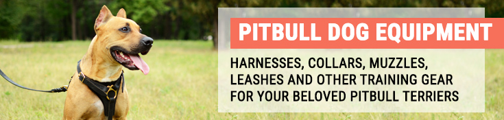 Pitbull Dog Equipment - Harnesses, Collars, Muzzles, Leashes and Other Training Gear for Your Beloved Pitbull Terriers
