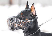 "Hand painted by our artists leather Muzzle ""Dondi"" Plus - Barbed Wire - product code m77BARBED WIRE"