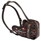 Training Hand Painted Leather Dog Muzzle