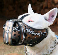 'Barbed Wire' Design Dog Muzzle Prevents Biting