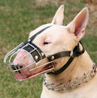 Bull Terrier Wire Basket Dog Muzzles Size Chart Bull Terrier muzzle - M4light