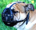 Padded Leather Basket Dog Muzzle for Daily Walks and Training