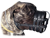 Large Leather Dog Muzzle for BULMASTIFF-Basket Leather Muzzle