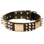 Dog Leather Collar with Old Brass Plates, Nickel Spikes and Pyramids 40% DISCOUNT [C86##1073 Leather Collar]