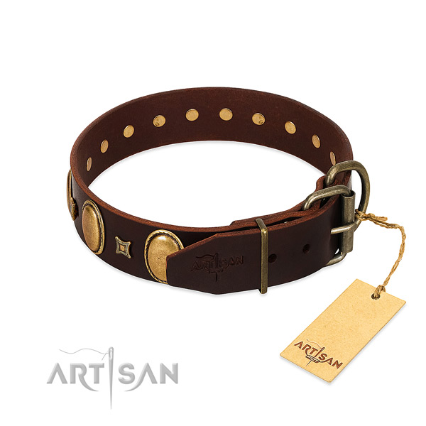 Unique Style Brown Leather Dog Collar with Old Bronze-like Plated Fittings