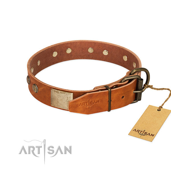 Tan Dog Collar Equipped with Rustproof Hardware