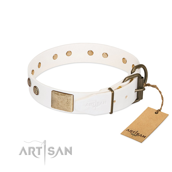 White Dog Collar - Easy-to-use and Adjust