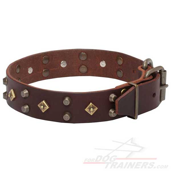 Buckled Leather Dog Collar Easy Handling
