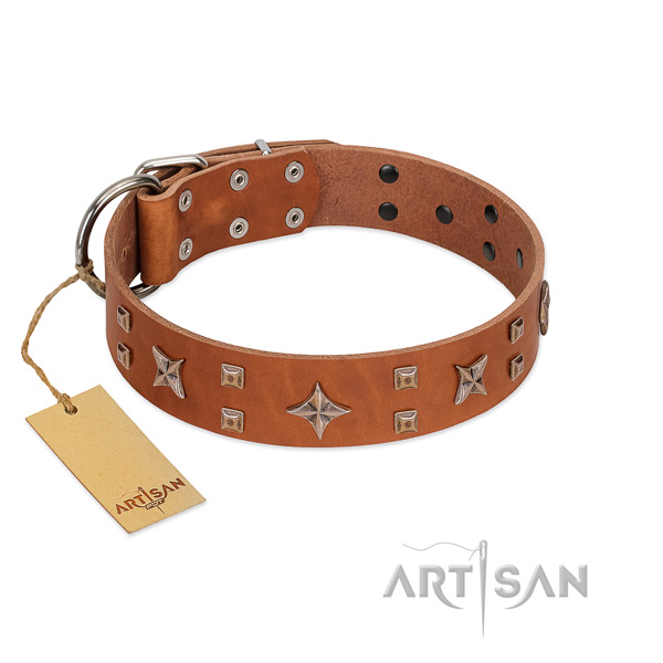 Handcrafted dog collar of selected genuine leather