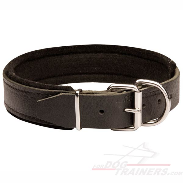 German Shepherd Collar Leather Extra Strong for Training