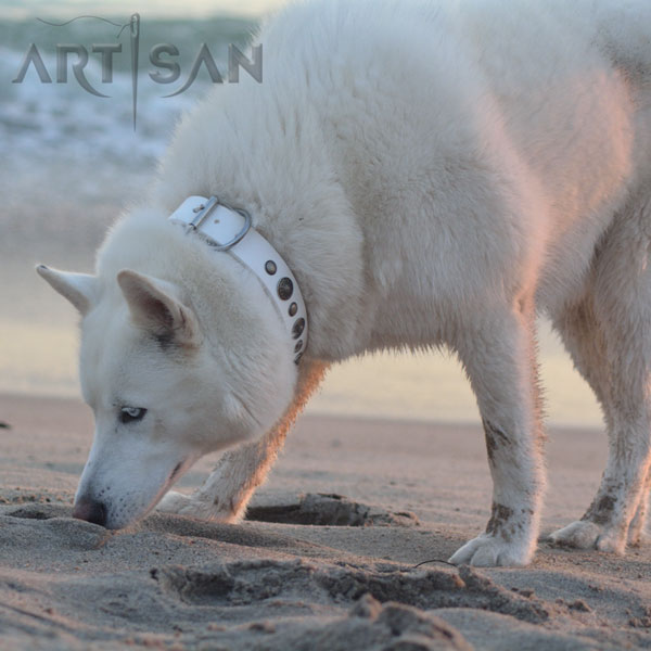 Adorned White Leather Husky Collar for Stylish Walking