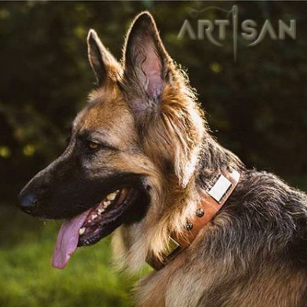 Decorated Leather German Shepherd Collar of Soft Genuine Leather