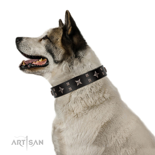 Safe walking leather Akita Inu
