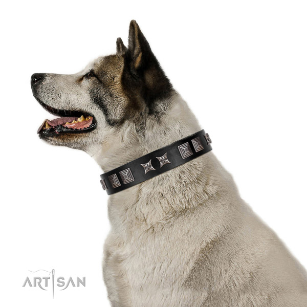 Elegant walking leather Akita Inu collar